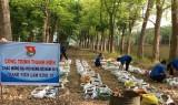 Đoàn Thanh niên Nông trường Cao su Trần Văn Lưu: Thực hiện công trình thanh niên làm kinh tế