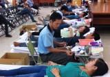 Hội Chữ thập đỏ Công ty TNHH MTV Cao su Dầu Tiếng: Hoàn thành chỉ tiêu hiến máu tình nguyện năm 2015