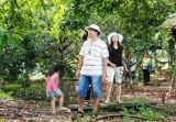 Du lịch sinh thái: Nỗ lực phát triển