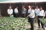 Đưa nền nông nghiệp phát triển bền vững