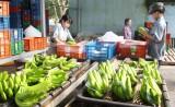 Hiệp định Thương mại Tự do Việt Nam - Hàn Quốc: Thêm cơ hội để kinh tế phát triển