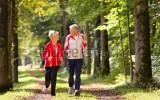 Đi bộ 30 phút/ngày giúp sống thọ thêm 5 năm