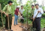 Phát động lễ trồng cây mừng kỷ niệm 125 năm Ngày sinh nhật Bác