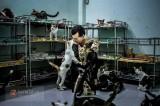 Người đàn ông Pháp thuê trọ Sài Gòn để nuôi hàng trăm chú chó, mèo bị bỏ rơi