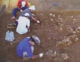 Di chỉ khảo cổ học Mỹ Lộc