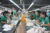 Sửa đổi Điều 60 Luật Bảo hiểm xã hội: Thể hiện đúng tâm tư người lao động