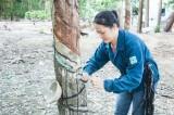 Người cán bộhội phụ nữ giỏi việc nước, đảm việc nhà