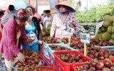 Lễ hội Lái Thiêu mùa trái chín năm 2015 sẽ diễn ra từ ngày 20 đến 25-6