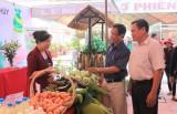 Hội Nông dân huyện Bàu Bàng: Tìm thêm cơ hội cho hàng nông sản
