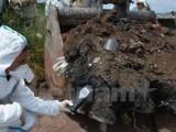 Italy lo lắng với thảm họa từ bãi rác lậu lớn nhất châu Âu