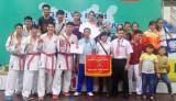 Giải các CLB mạnh karatedo toàn quốc năm 2015: Bình Dương giành hạng nhất toàn đoàn