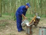 Công nhân Nguyễn Tấn Nghị: Yêu nghề, nghề không phụ…