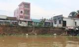 Cần sớm khắc phục tình trạng sạt lở ven sông Đồng Nai