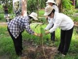 Nhiều mô hình thiết thực bảo vệ môi trường