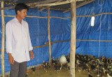 Nông dân trẻ Phạm Minh Thảo: Thất bại là mẹ của thành công…