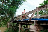 Tân Hiệp Phát tuyên bố mỗi tháng sẽ xây một cây cầu treo dân sinh