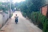 Nhân dân khu phố Bình Quới B, phường Bình Chuẩn, TX.Thuận An: Chung tay xây dựng khu phố xanh, sạch, đẹp