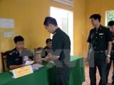 Cử tri tại nhiều địa phương trong cả nước tiến hành bầu cử sớm