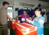 Cử tri trong tỉnh nô nức đi bầu cử
