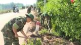 Lực lượng vũ trang tỉnh: Chung sức xây dựng nông thôn mới