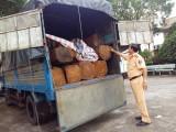 Bắt xe tải chở 3m3 gỗ lậu
