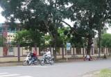 Hội liên hiệp Phụ nữ xã Tân Long (huyện Phú Giáo): Nổi bật với mô hình tuyến đường không rác