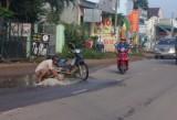 Người dân vá đường