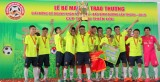Giải bóng đá Doanh nhân mở rộng - Báo Bình Dương lần IV-2016: Hứa hẹn sẽ thành công như mong đợi