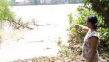 Báo động tình trạng sạt lở ven sông Đồng Nai