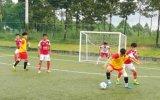 Kết quả vòng 2 giải bóng đá Doanh nhân mở rộng -Báo Bình Dương lần IV-2016
