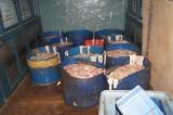 Bắt quả tang xe tải chở hơn 500kg nội tạng thối đưa vào chợ