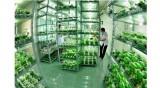 着力推进高技术农业发展