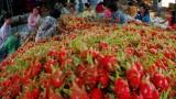 澳大利亚原则同意进口越南新鲜火龙果