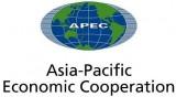 APEC 2017: Vietnam makes positive contributions to APEC