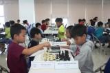 平阳扩大各年龄组国际象棋锦标赛共吸引180名棋手参赛