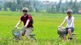 绿色旅游成为越南旅游业可持续发展的钥匙