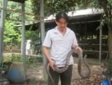 Hội Nông dân huyện Bàu Bàng: Thi đua sản xuất, kinh doanh giỏi, xây dựng nông thôn mới