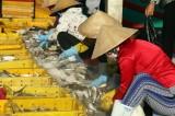 110 doanh nghiệp vừa và nhỏ Việt Nam tìm cơ hội ở Singapore