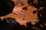 Người dân Tây Nguyên dùng phế liệu làm máy đo nước tưới cho vườn càphê