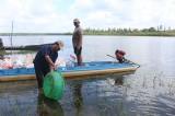 Tăng cường quản lý nguồn lợi thủy sản