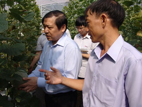 Delegation of Vietnam Farmers Association's Central Committee works with provincial Farmers Association