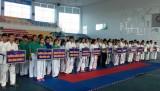 全国10个省市、部门参加传统东南部地区空手道锦标赛