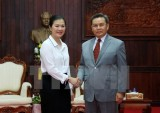 越南祖国阵线与老挝建国阵线合作 加大2017年各大事件宣传力度