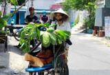 Người Sài Gòn đang phải chịu nắng nóng gay gắt, bỏng rát đến tháng 5