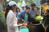 Diệt muỗi, lăng quăng và vệ sinh môi trường: Biện pháp phòng chống dịch bệnh hiệu quả