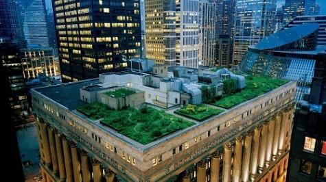 Những khu vườn trên mái nhà