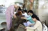Bà Nguyễn Thị Cúc, Chủ nhiệm HTX Mây tre lá Ba Nhất: Người đưa bèo, cỏ đi Tây