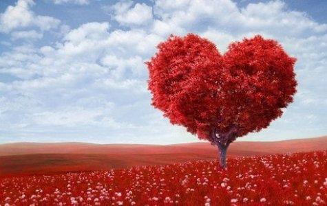 Thứ tàn ác nhất trong tình yêu, đôi khi chính là kỷ niệm...