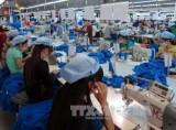 Garment exports enjoy strong growth