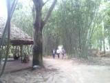 Tre - tiếng gọi âm vang  trong lòng người dân Phú An